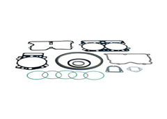 Gaskets and seal